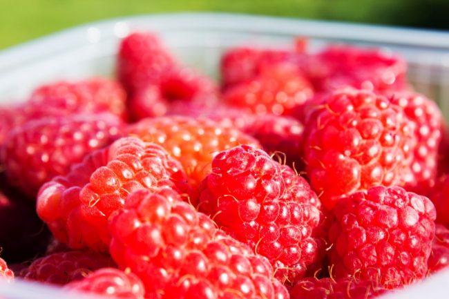 Amazing Raspberries